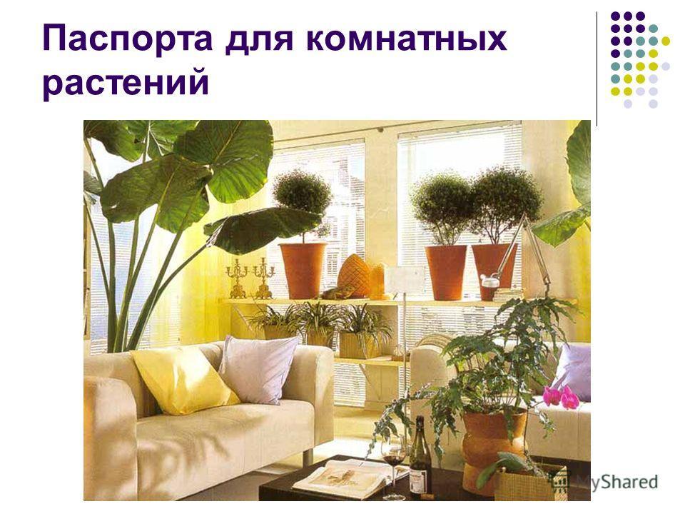Паспорта для комнатных растений