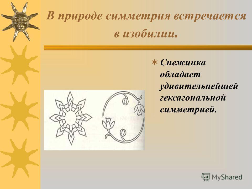 В природе симметрия встречается в изобилии. Снежинка обладает удивительнейшей гексагональной симметрией.