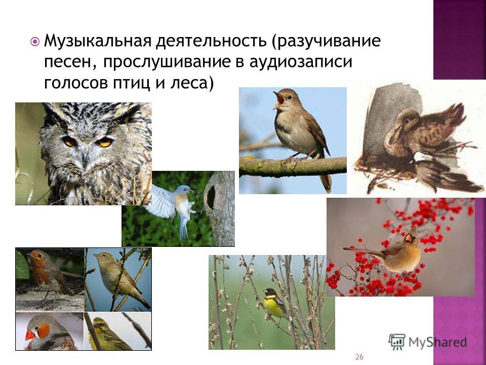 Музыкальная деятельность (разучивание песен, прослушивание в аудиозаписи голосов птиц и леса) 26