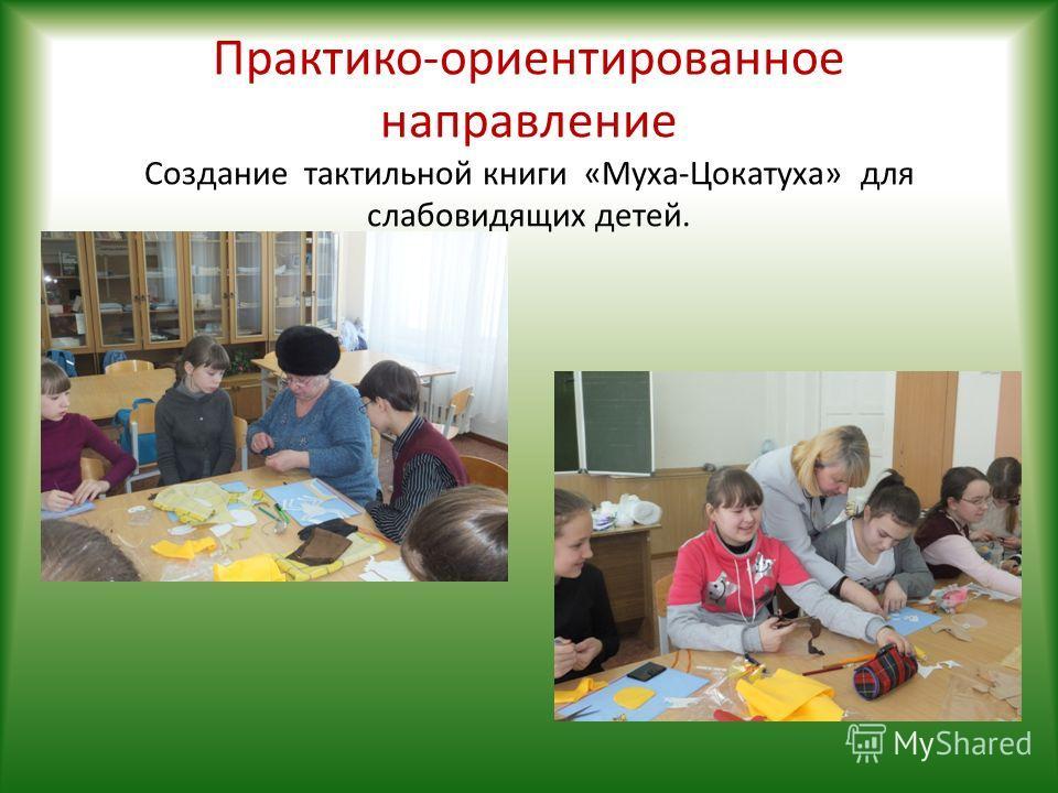 Практико-ориентированное направление Создание тактильной книги «Муха-Цокатуха» для слабовидящих детей.