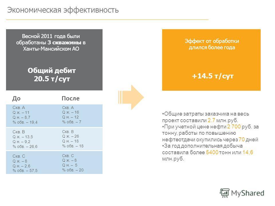 Экономическая эффективность Весной 2011 года были обработаны 3 скважины в Ханты-Мансийском АО Общий дебит 20.5 т/сут +14.5 т/сут Общие затраты заказчика на весь проект составили 2.7 млн.руб. При учетной цене нефти 2 700 руб. за тонну, работы по повыш