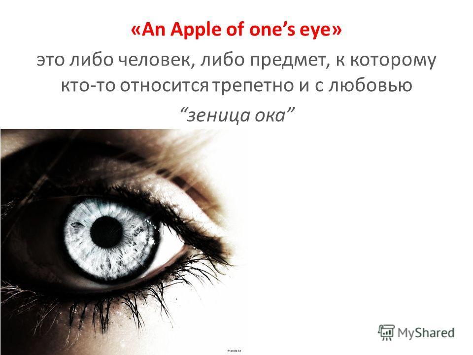«An Apple of ones eye» это либо человек, либо предмет, к которому кто-то относится трепетно и с любовью зеница ока