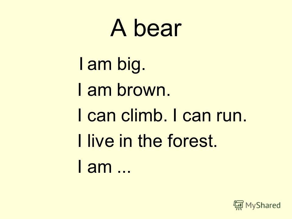 A bear I am big. I am brown. I can climb. I can run. I live in the forest. I am...