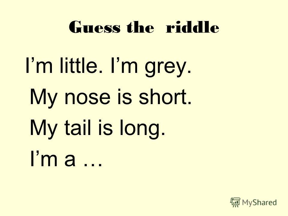 Guess the riddle Im little. Im grey. My nose is short. My tail is long. Im a …