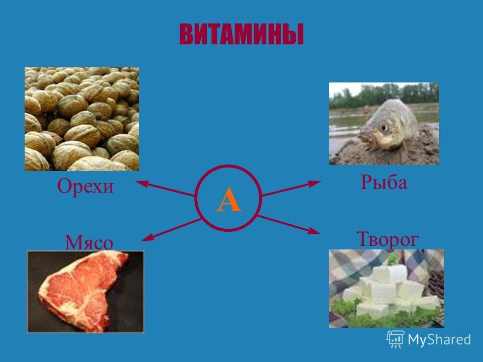 ВИТАМИНЫ А Орехи Мясо Рыба Творог