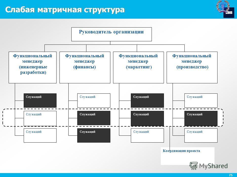 75 Слабая матричная структура Координация проекта Руководитель организации Функциональный менеджер (инженерные разработки) Функциональный менеджер (финансы) Функциональный менеджер (маркетинг) Функциональный менеджер (производство) Служащий