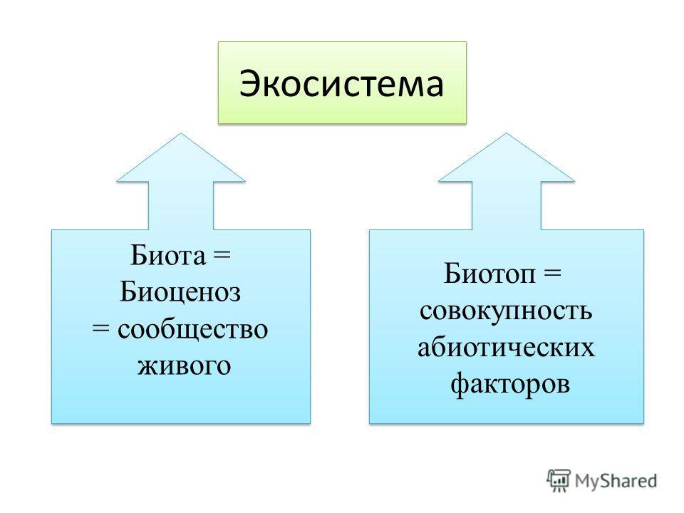 Экосистема Биота = Биоценоз = сообщество живого Биота = Биоценоз = сообщество живого Биотоп = совокупность абиотических факторов Биотоп = совокупность абиотических факторов