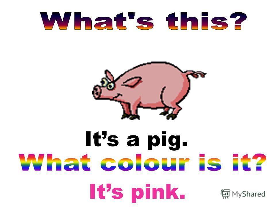 Its pink. Its a pig.