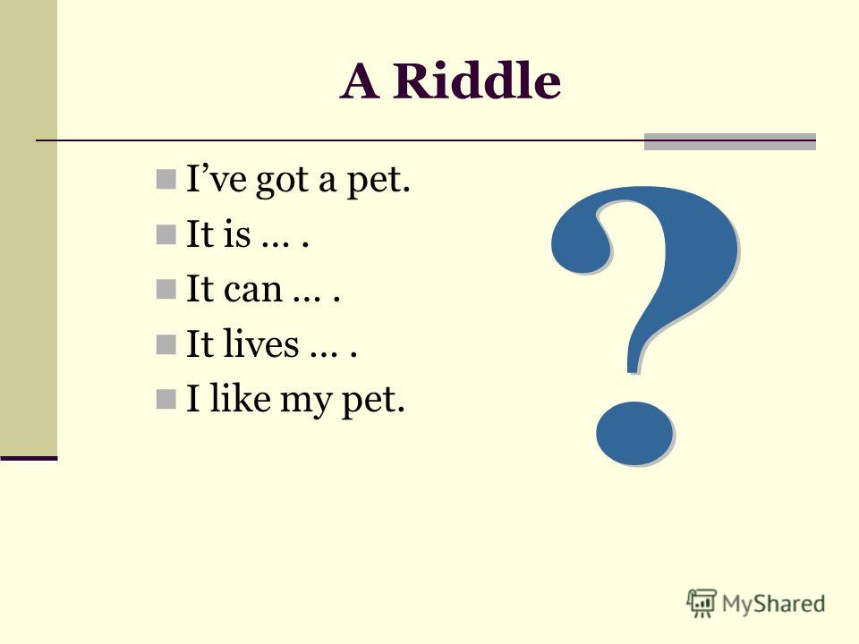 A Riddle Ive got a pet. It is …. It can …. It lives …. I like my pet.