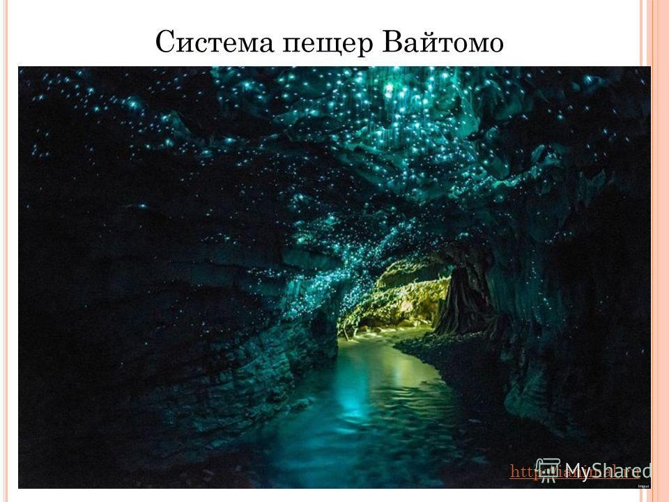 2 Система пещер Вайтомо http://ianimal.ru