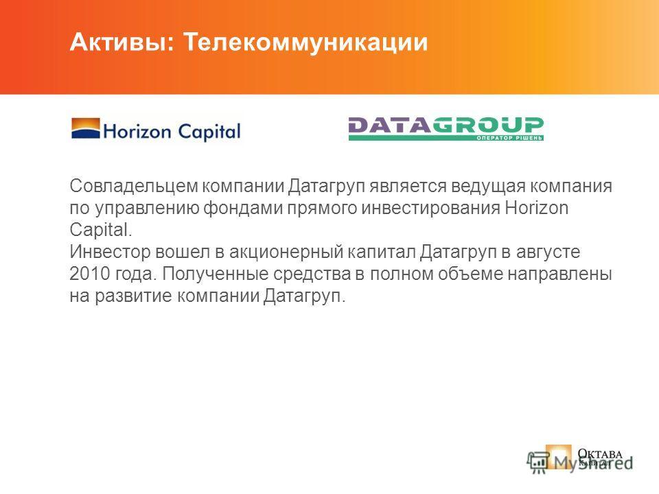 Совладельцем компании Датагруп является ведущая компания по управлению фондами прямого инвестирования Horizon Capital. Инвестор вошел в акционерный капитал Датагруп в августе 2010 года. Полученные средства в полном объеме направлены на развитие компа
