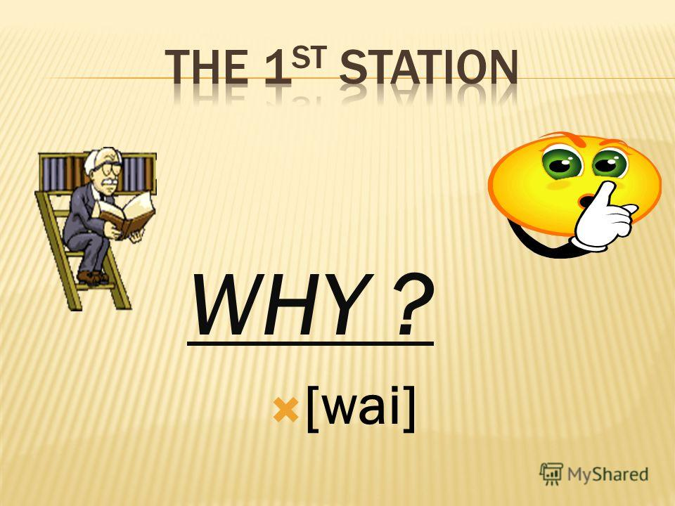 WHY ? [wai]