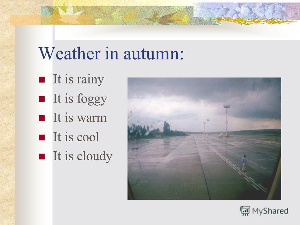Weather in summer: It is warm It is hot It is sunny It is rainy