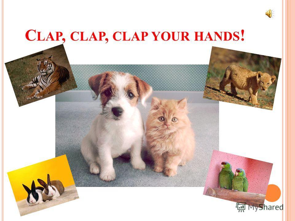 C LAP, CLAP, CLAP YOUR HANDS !