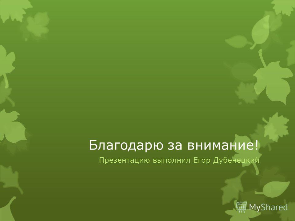 Благодарю за внимание! Презентацию выполнил Егор Дубенецкий