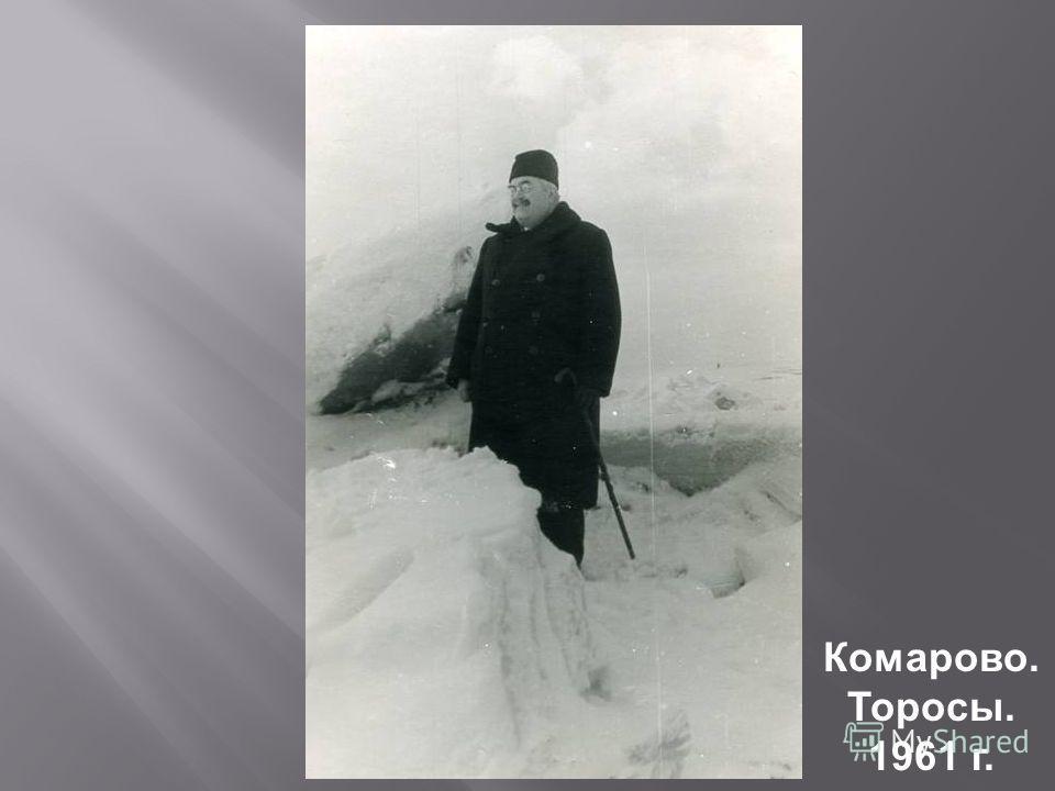 Комарово. Торосы. 1961 г.