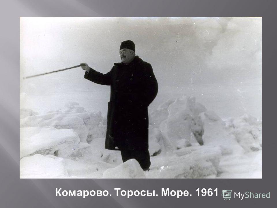 Комарово. Торосы. Море. 1961 г.