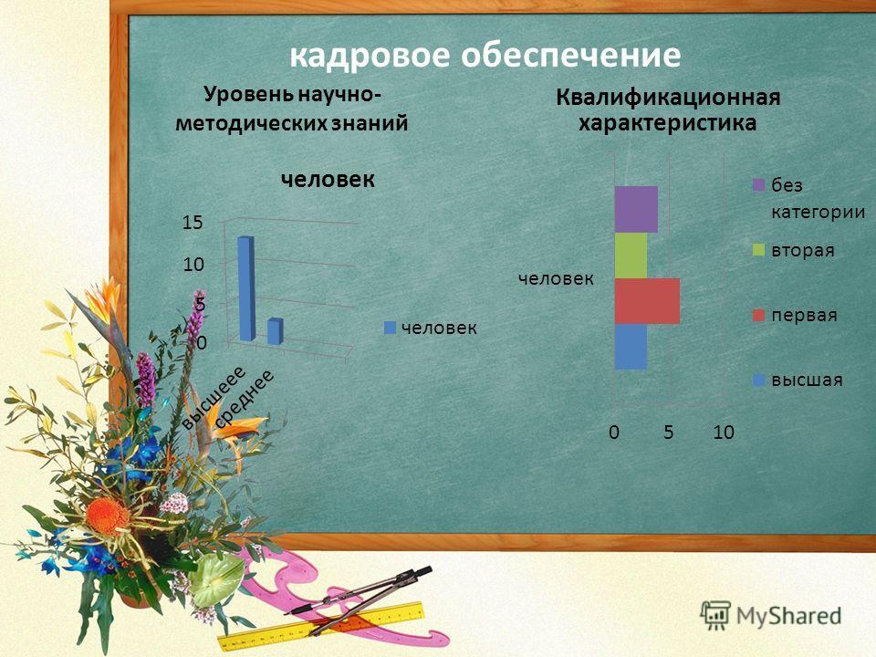 кадровое обеспечение Уровень научно- методических знаний Квалификационная характеристика