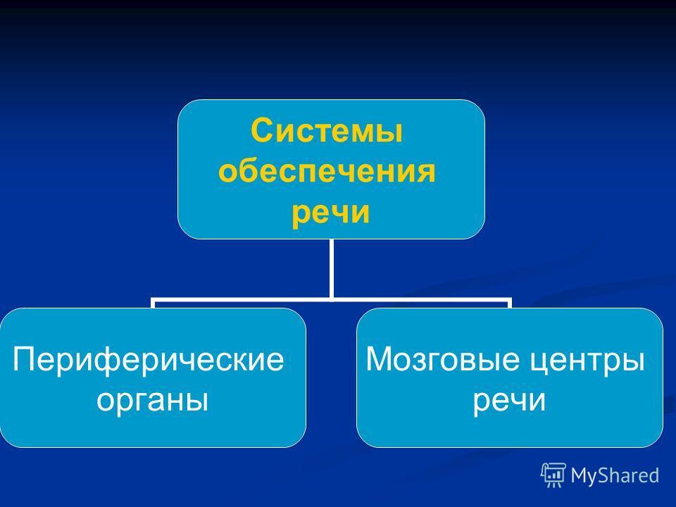 Системы обеспечения речи Периферические органы Мозговые центры речи