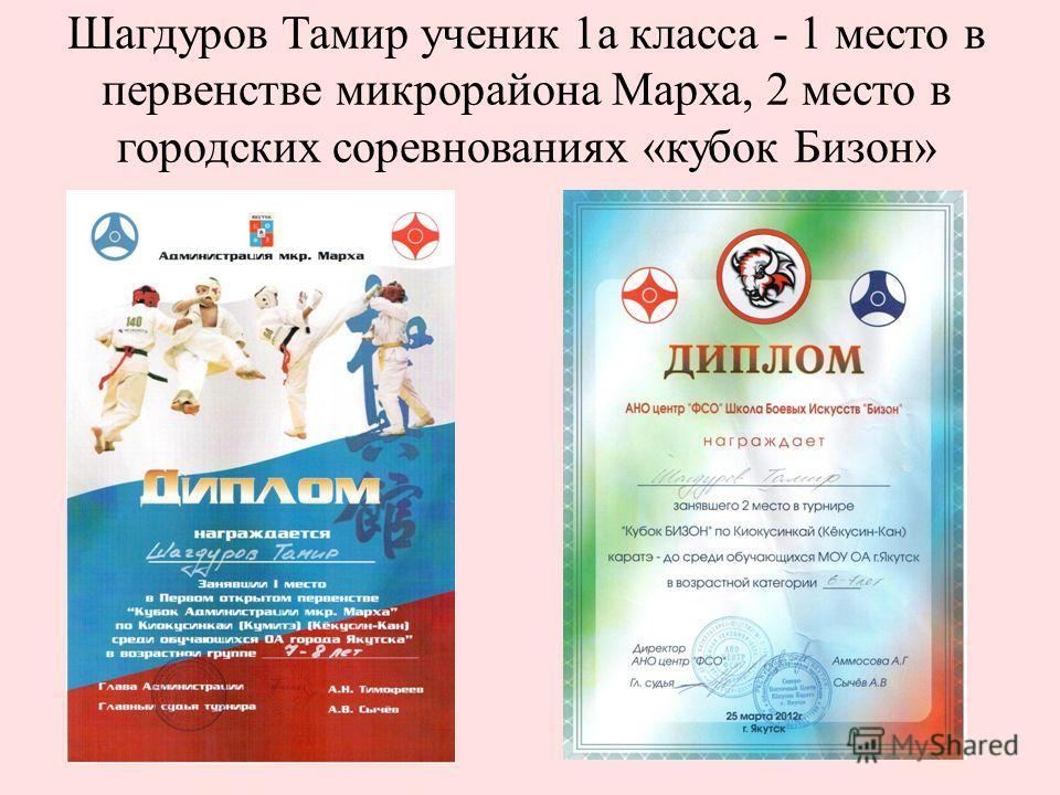 Шагдуров Тамир ученик 1а класса - 1 место в первенстве микрорайона Марха, 2 место в городских соревнованиях «кубок Бизон»