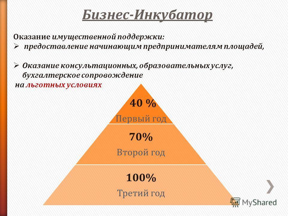 Бизнес-Инкубатор Оказание имущественной поддержки: предоставление начинающим предпринимателям площадей, Оказание консультационных, образовательных услуг, бухгалтерское сопровождение на льготных условиях 40 % Первый год 70% Второй год 100% Третий год