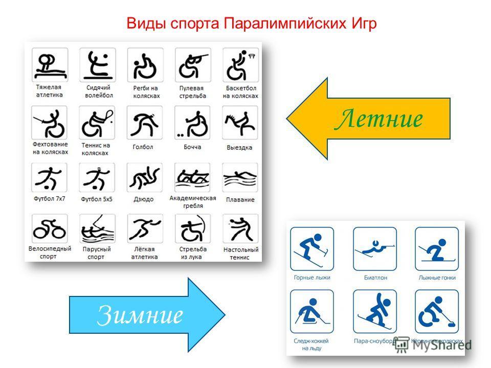 Виды спорта Паралимпийских Игр Летние Зимние