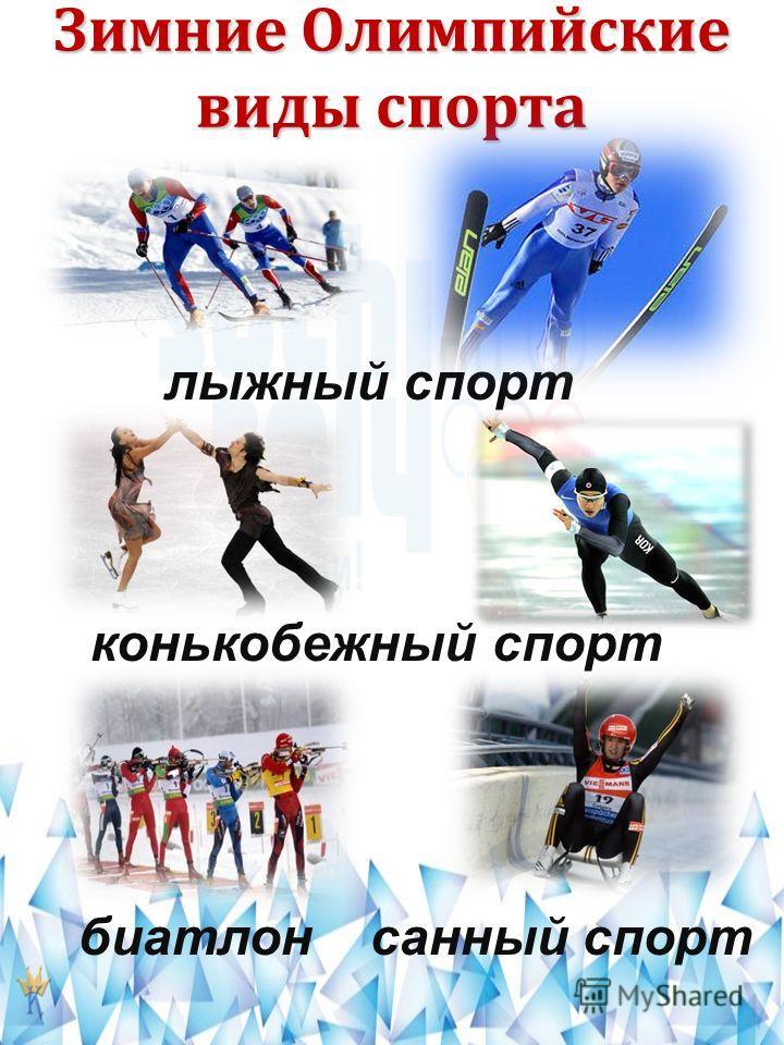 Зимние Олимпийские виды спорта лыжный спорт конькобежный спорт биатлонсанный спорт