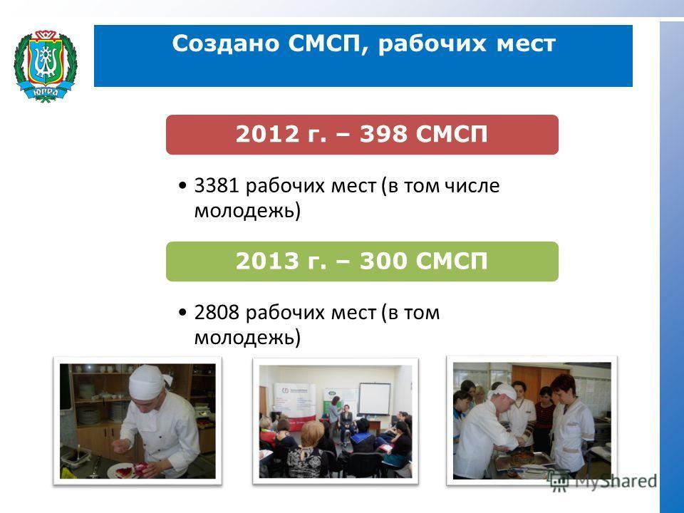 Создано CМСП, рабочих мест 2012 г. – 398 СМСП 3381 рабочих мест (в том числе молодежь) 2013 г. – 300 СМСП 2808 рабочих мест (в том молодежь)