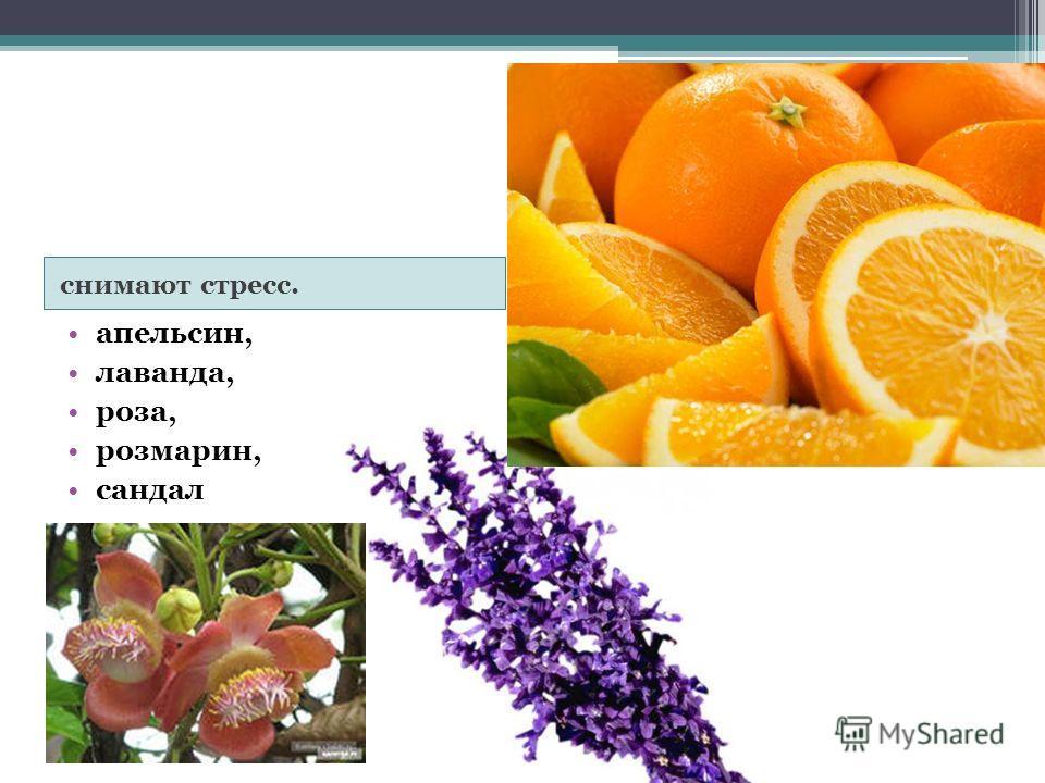 снимают стресс. апельсин, лаванда, роза, розмарин, сандал
