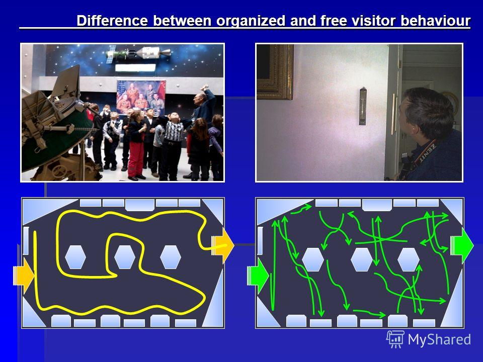 Difference between organized and free visitor behaviour Difference between organized and free visitor behaviour