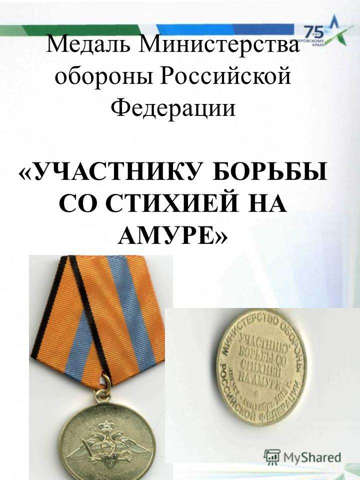 Медаль Министерства обороны Российской Федерации «УЧАСТНИКУ БОРЬБЫ СО СТИХИЕЙ НА АМУРЕ»