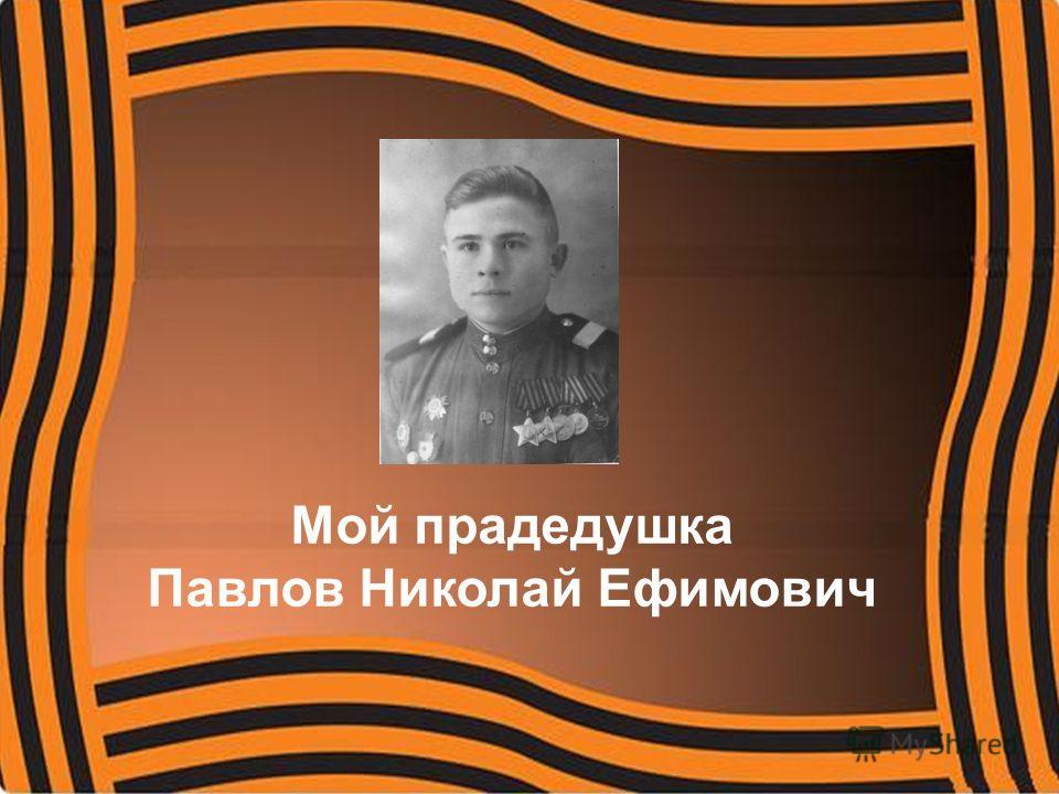 Мой прадедушка Павлов Николай Ефимович