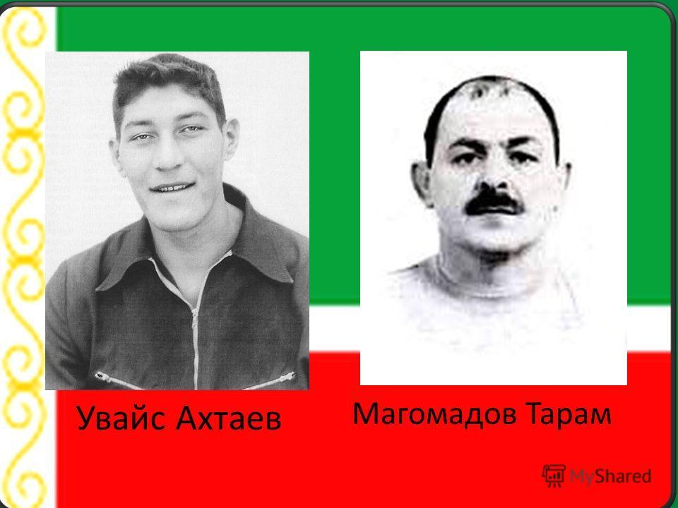 Увайс Ахтаев Магомадов Тарам
