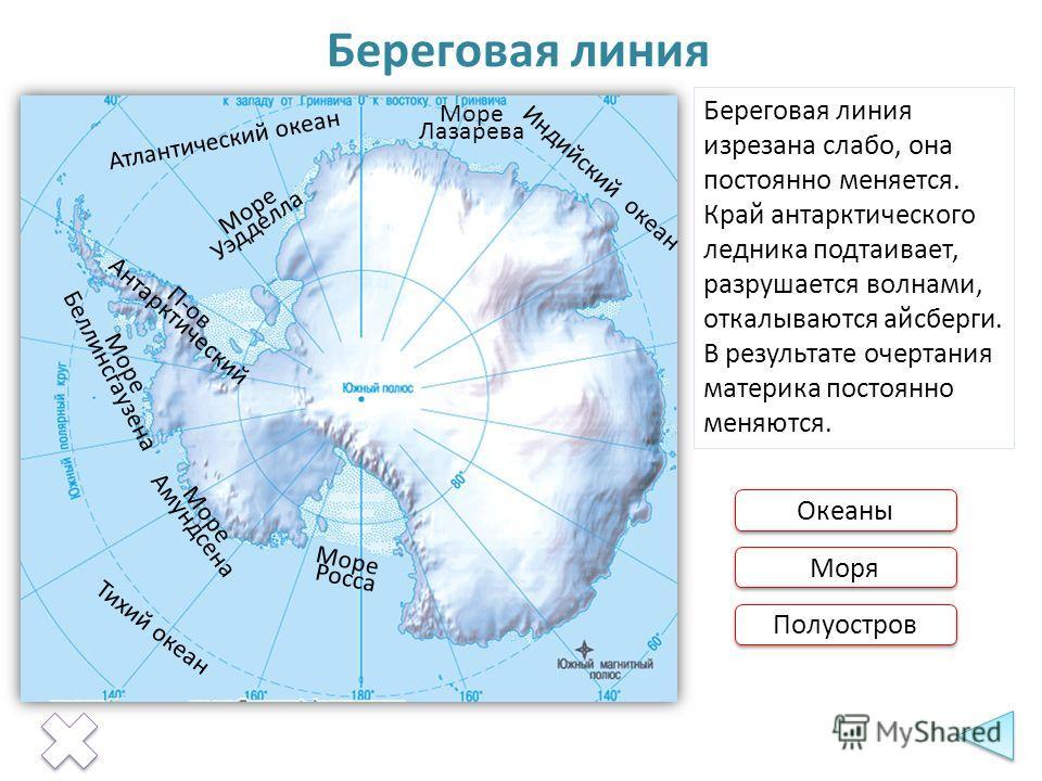 Тихий океан Атлантический океан Индийский океан Береговая линия Береговая линия изрезана слабо, она постоянно меняется. Край антарктического ледника подтаивает, разрушается волнами, откалываются айсберги. В результате очертания материка постоянно мен