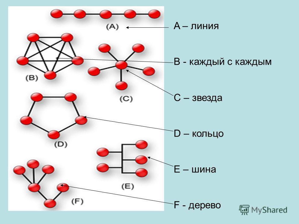 A – линия B - каждый с каждым C – звезда D – кольцо E – шина F - дерево