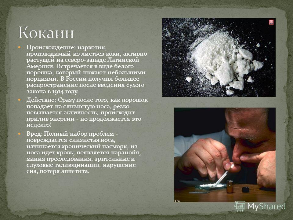 Происхождение: наркотик, производимый из листьев коки, активно растущей на северо-западе Латинской Америки. Встречается в виде белого порошка, который нюхают небольшими порциями. В России получил большее распространение после введения сухого закона в