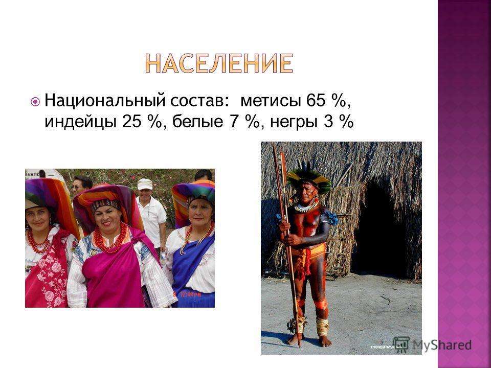 Национальный состав: метисы 65 %, индейцы 25 %, белые 7 %, негры 3 %
