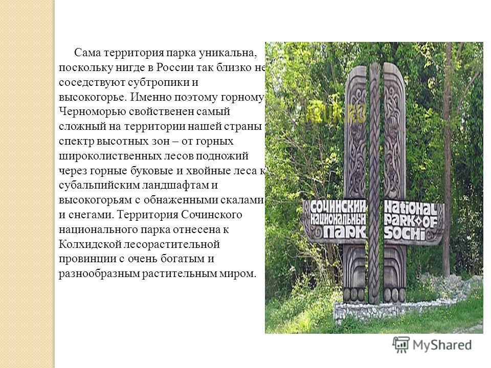 Сама территория парка уникальна, поскольку нигде в России так близко не соседствуют субтропики и высокогорье. Именно поэтому горному Черноморью свойственен самый сложный на территории нашей страны спектр высотных зон – от горных широколиственных лесо