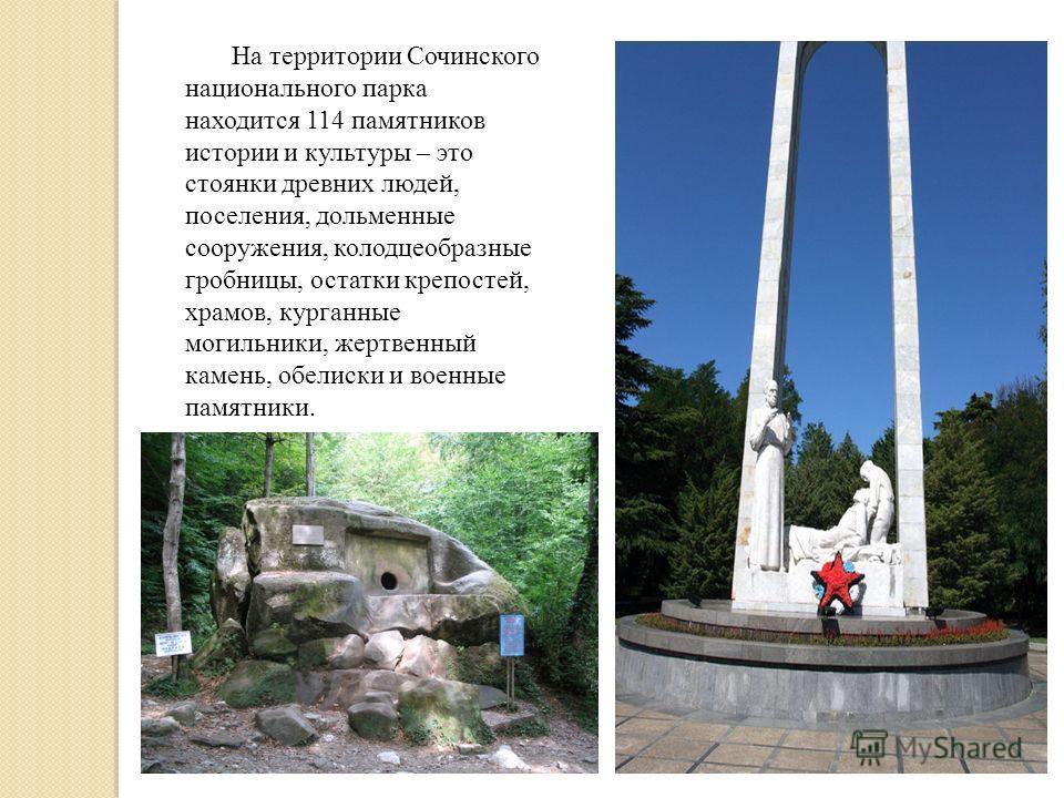 На территории Сочинского национального парка находится 114 памятников истории и культуры – это стоянки древних людей, поселения, дольменные сооружения, колодцеобразные гробницы, остатки крепостей, храмов, курганные могильники, жертвенный камень, обел