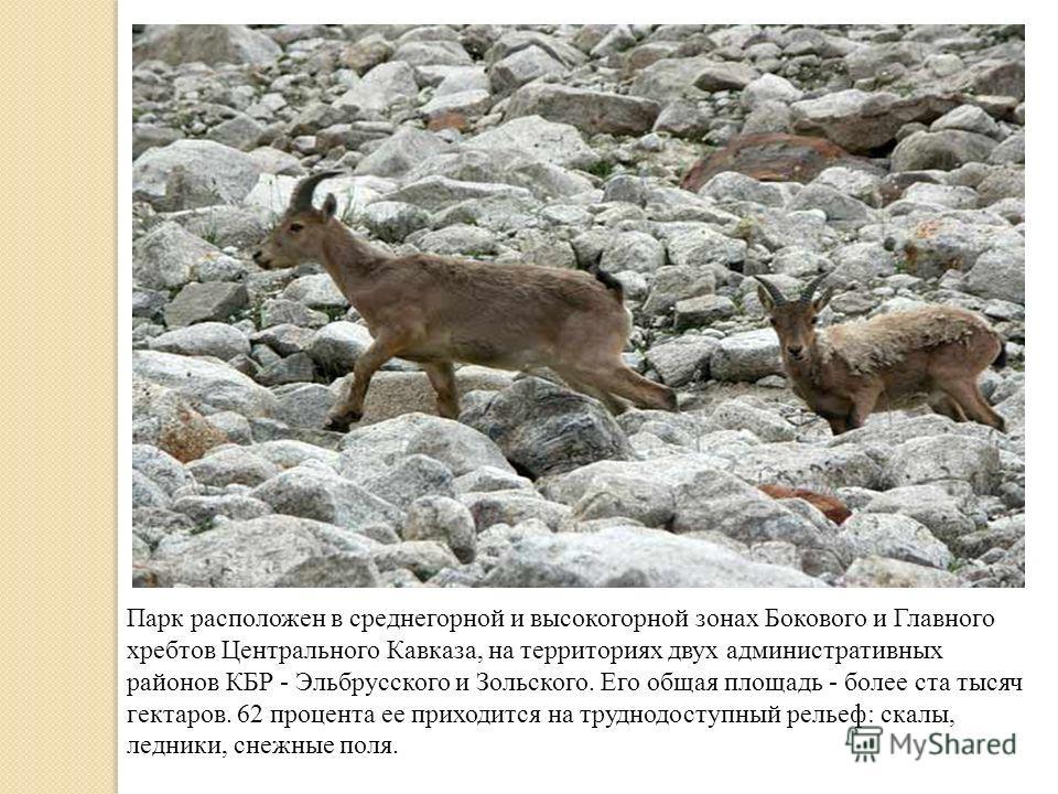 Парк расположен в среднегорной и высокогорной зонах Бокового и Главного хребтов Центрального Кавказа, на территориях двух административных районов КБР - Эльбрусского и Зольского. Его общая площадь - более ста тысяч гектаров. 62 процента ее приходится