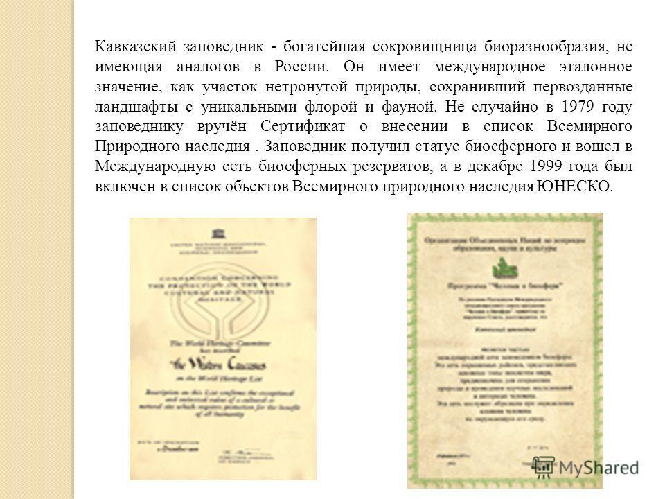 Кавказский заповедник - богатейшая сокровищница биоразнообразия, не имеющая аналогов в России. Он имеет международное эталонное значение, как участок нетронутой природы, сохранивший первозданные ландшафты с уникальными флорой и фауной. Не случайно в