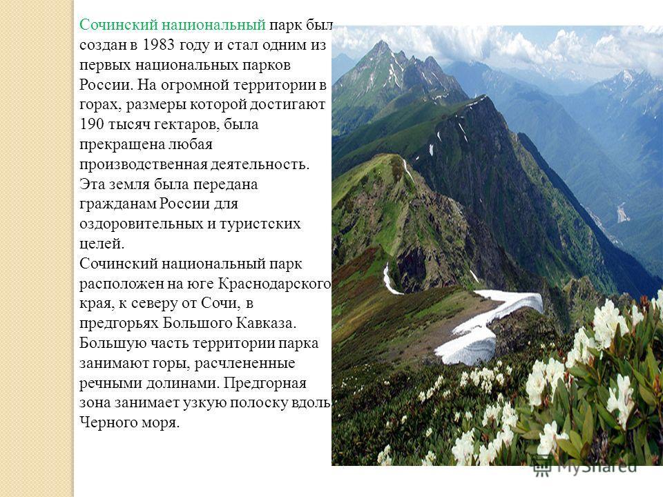 Сочинский национальный парк был создан в 1983 году и стал одним из первых национальных парков России. На огромной территории в горах, размеры которой достигают 190 тысяч гектаров, была прекращена любая производственная деятельность. Эта земля была пе