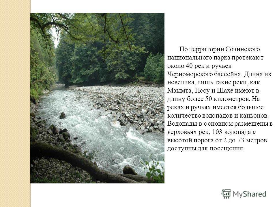 По территории Сочинского национального парка протекают около 40 рек и ручьев Черноморского бассейна. Длина их невелика, лишь такие реки, как Мзымта, Псоу и Шахе имеют в длину более 50 километров. На реках и ручьях имеется большое количество водопадов