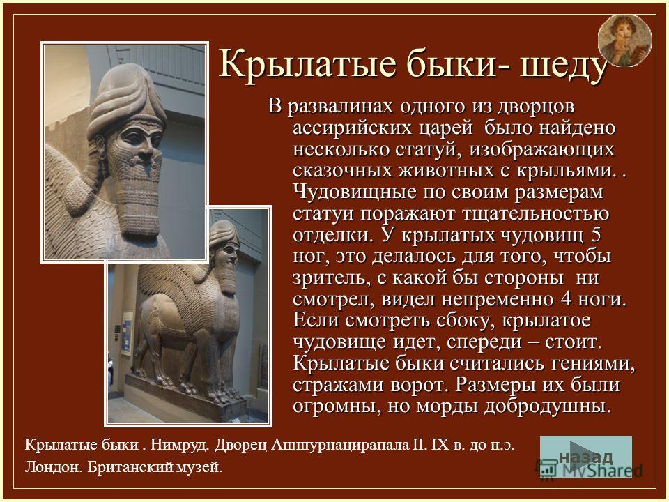 Крылатые быки- шеду В развалинах одного из дворцов ассирийских царей было найдено несколько статуй, изображающих сказочных животных с крыльями.. Чудовищные по своим размерам статуи поражают тщательностью отделки. У крылатых чудовищ 5 ног, это делалос