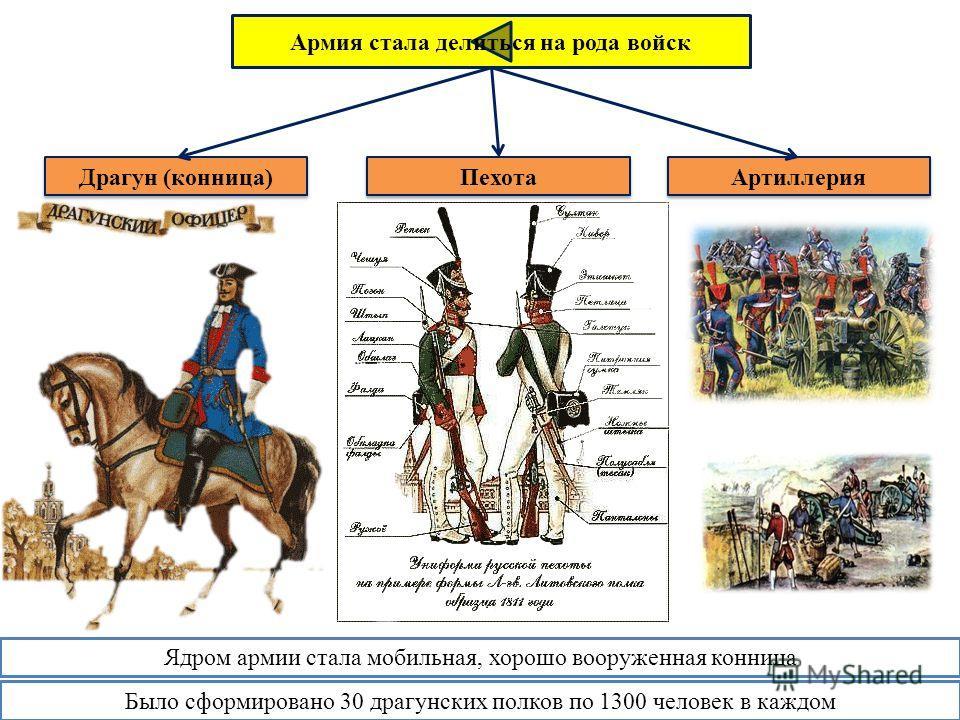 Армия стала делиться на рода войск Драгун (конница) Пехота Артиллерия Ядром армии стала мобильная, хорошо вооруженная конница Было сформировано 30 драгунских полков по 1300 человек в каждом