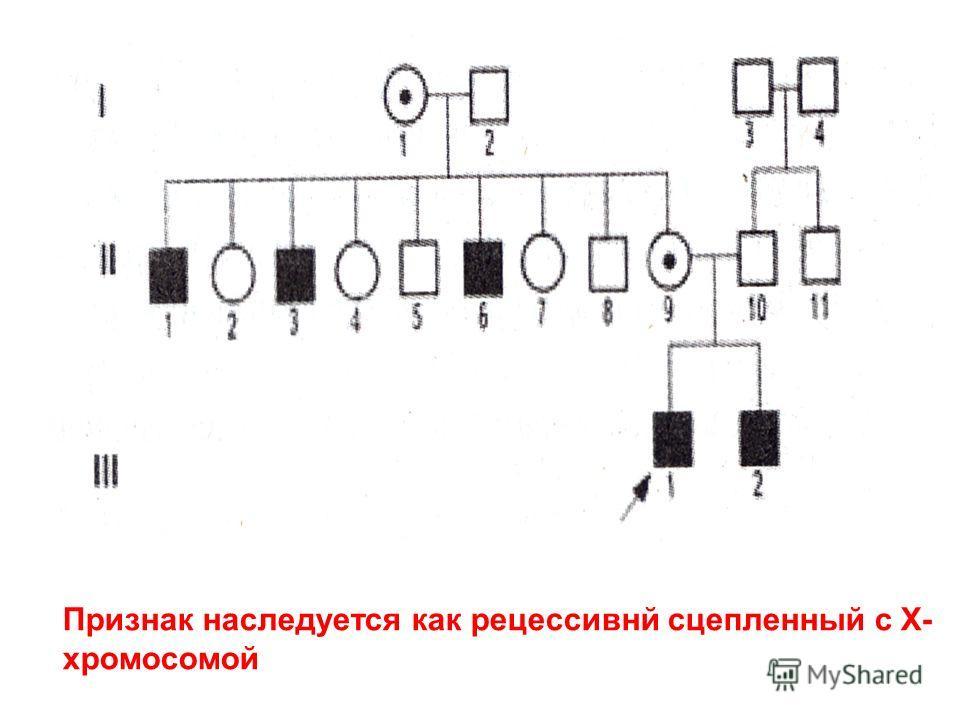 Признак наследуется как рецессивнй сцепленный с Х- хромосомой