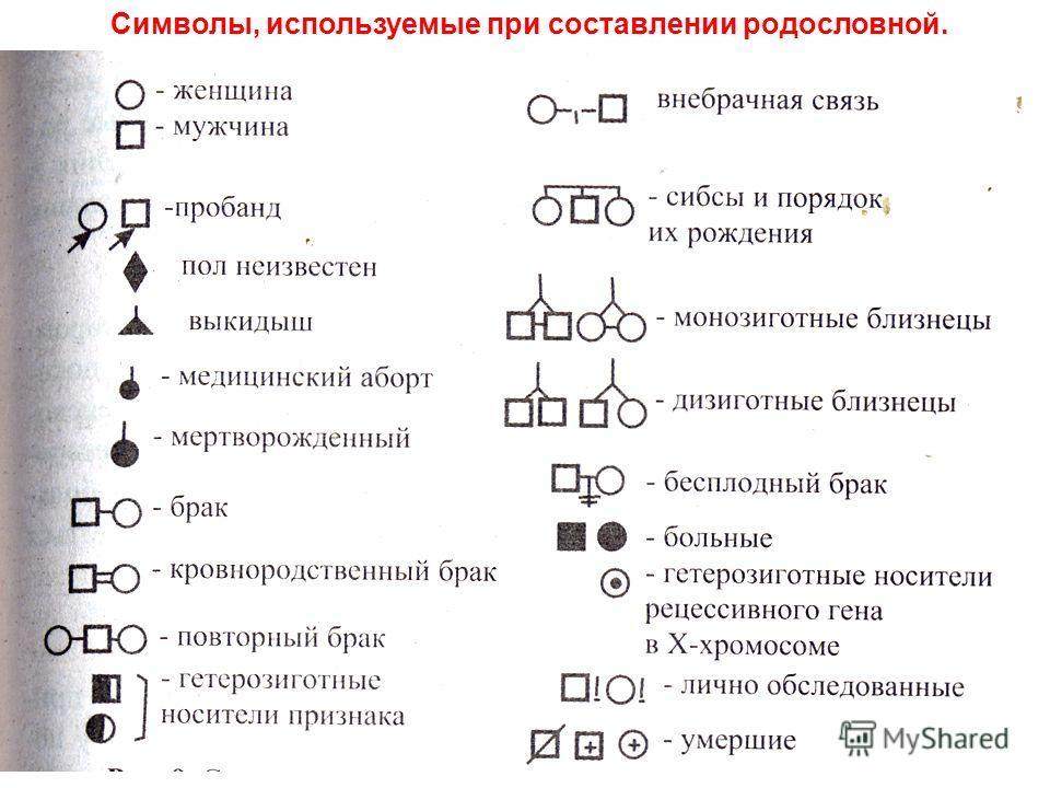 Символы, используемые при составлении родословной.
