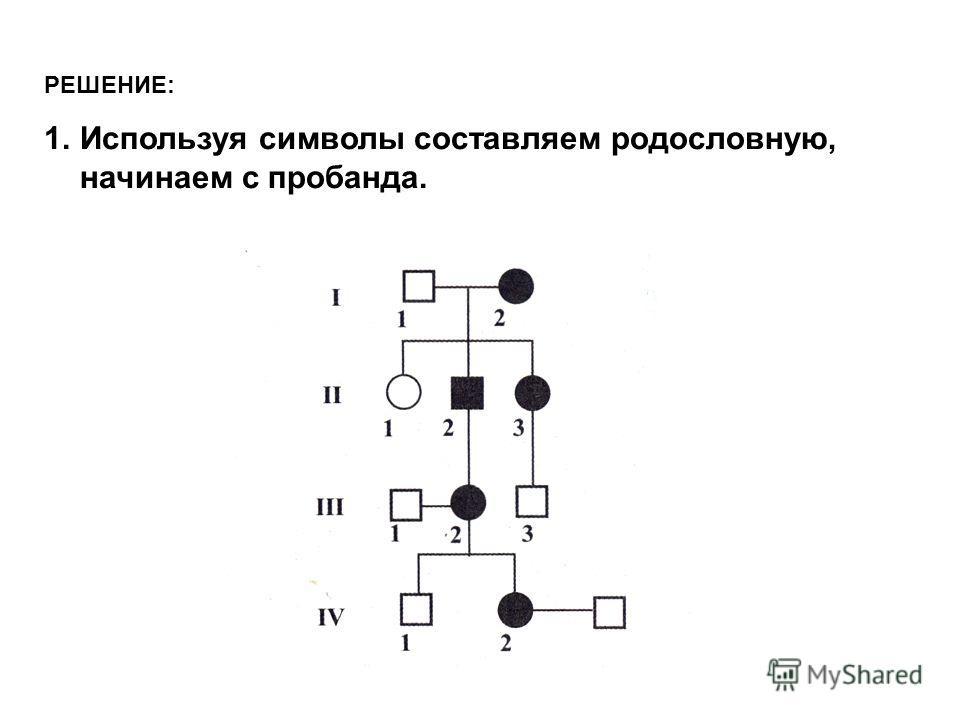 РЕШЕНИЕ: 1.Используя символы составляем родословную, начинаем с пробанда.