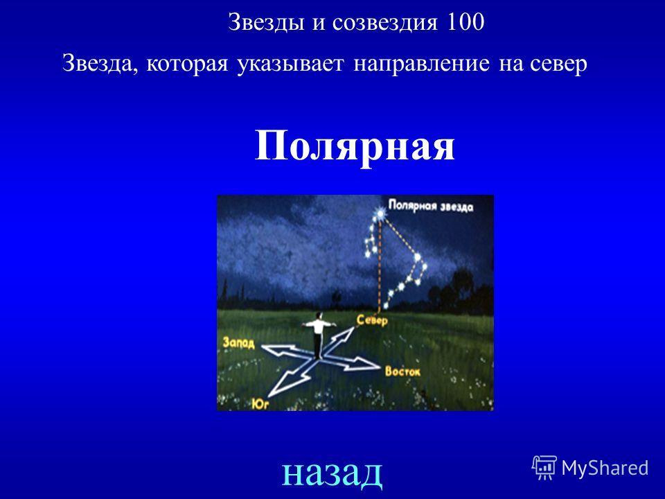 Звезды и созвездия 100 Звезда, которая указывает направление на север ответ