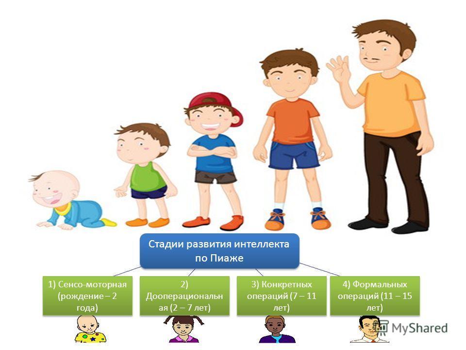 Стадии развития интеллекта по Пиаже 1) Сенсо-моторная (рождение – 2 года) 2) Дооперациональн ая (2 – 7 лет) 3) Конкретных операций (7 – 11 лет) 4) Формальных операций (11 – 15 лет)